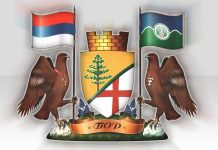 grb logo Opstina Bor