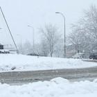 Sneg na kolovozu u Boru