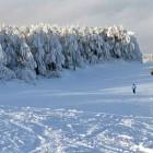 crni vrh bor skijanje