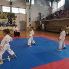 karate-kraljevacki-pobednik-sku-tang-soo-do-_2