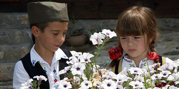 Foto: decijiansamblbor.wordpress.com