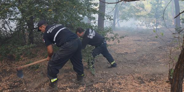 Vatrogasci stavljaju pod kontrolu požar na Starom selištu