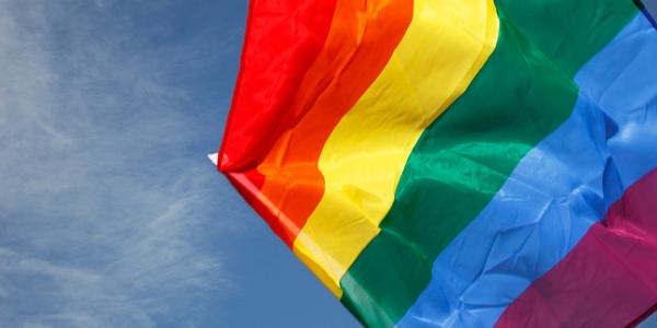 zastava-duginih-boja